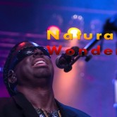 Natural WONDER – The Ultimate Stevie Wonder Experience