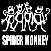 "Spider Monkey ""In the House"""