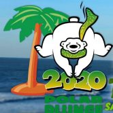 2020 Isle of Palms Polar Plunge