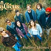 The Delta Circus (Rolling Stones Tribute)